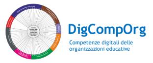 DigCompOrg